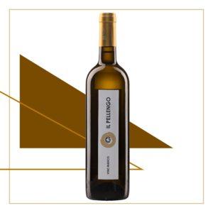 Il Pellengo: vino bianco biologico piemontese da vitigno internazionale.